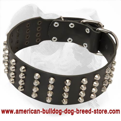Wide Studded Leather American Bulldog Collar