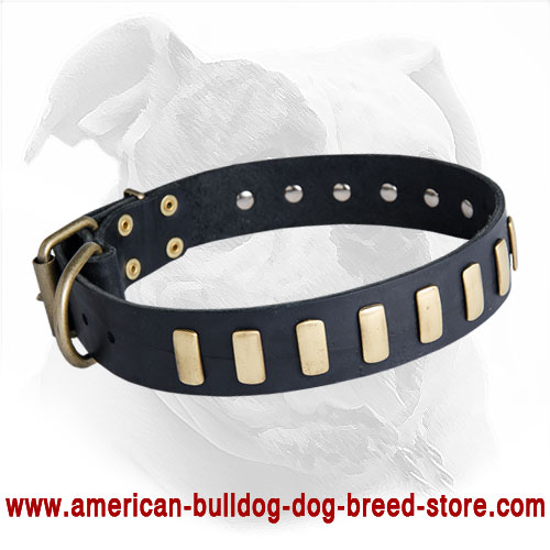 Decorated with Plates Leather American Bulldog Collar for Daily Walking