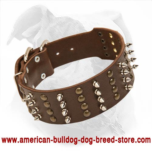 american bulldog collars buy spiked studded leather american bulldog collar for walking 2384