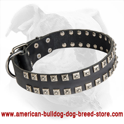 Leather Dog Collar with Caterpillar Studs Decoration for American Bulldog