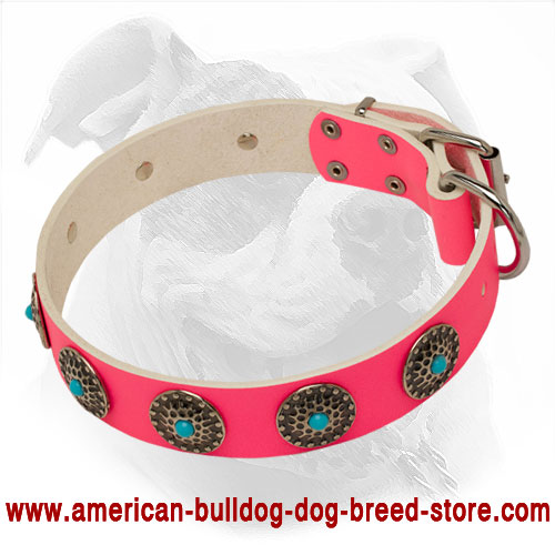 Pink Leather She-Dog Collar with Blue Stones for Walking Female American Bulldogs