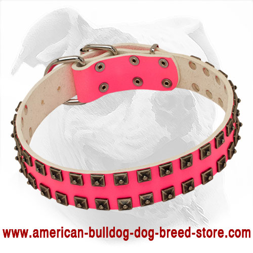 Stylish Pink Leather Collar with Caterpillar Studs for American Bulldog She-Dogs