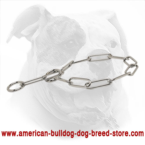 Chrome Plated American Bulldog Choke Collar