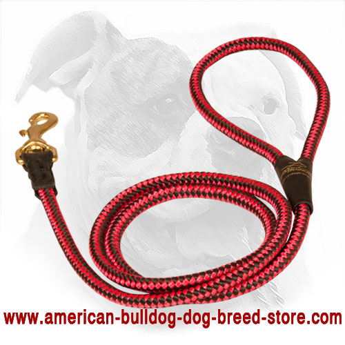 Cord Nylon Dog Leash for American Bulldog