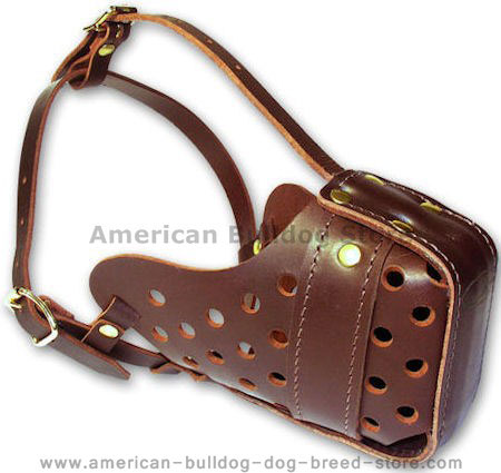 Similar Like Gappay Leather Muzzle for American Bulldog