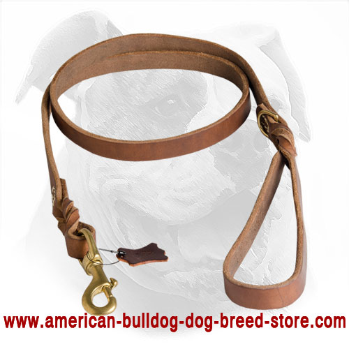 Upgraded Leather Dog Leash for American Bulldog