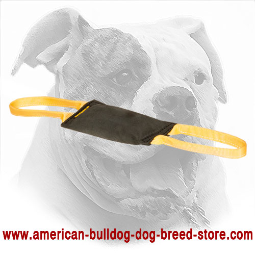 American Bulldog Bite Tug Equipped with Two Handles