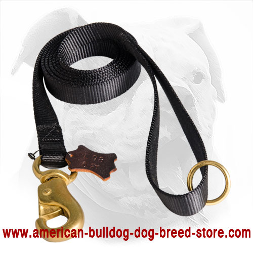 Nylon American Bulldog Leash with Solid Snap Hook