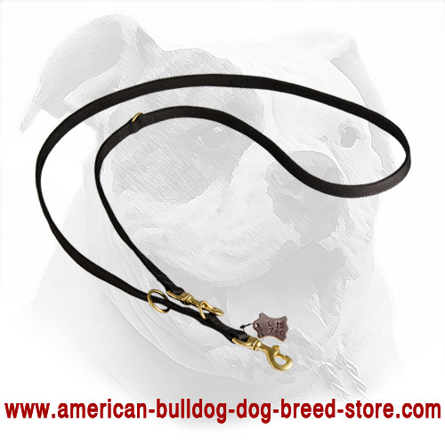 Handmade Police Nylon Dog Lead for American Bulldog