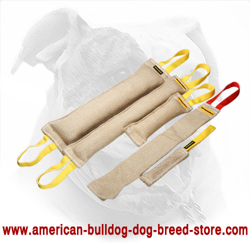 American Bulldog Training Set of Bite Tugs + Present for Free