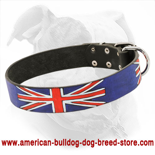 Union Jack Leather Dog Collar for American Bulldog