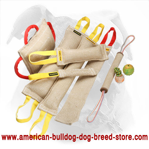 Ultimate American Bulldog Training Set with 3 Gifts for Free