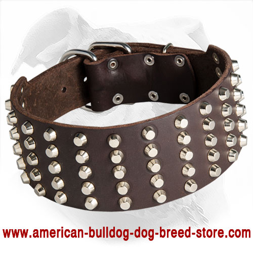 Fashionable Wide Leather Dog Collar for American Bulldog