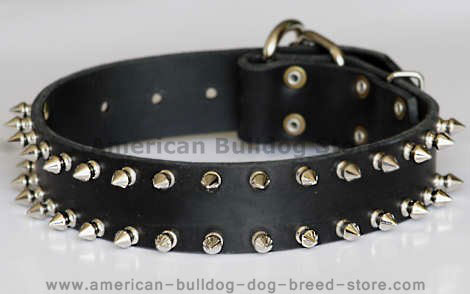 Leather Spked dog collar
