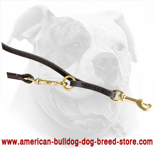 Multimode Leather American Bulldog Leash