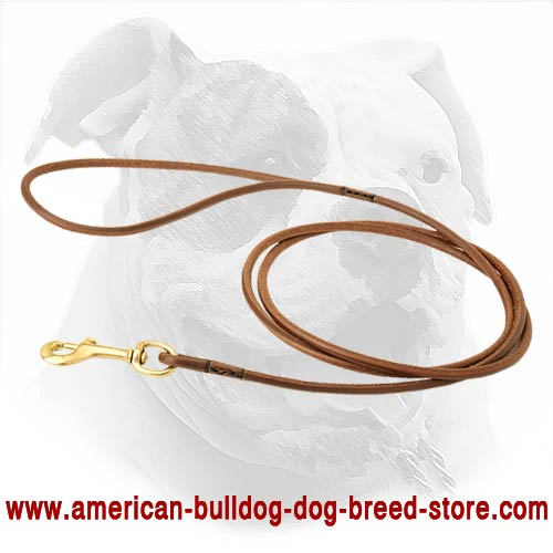Strong and reliable dog leash for American Bulldog breed