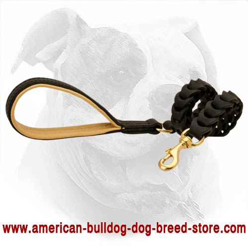 Excellent quality leather lead