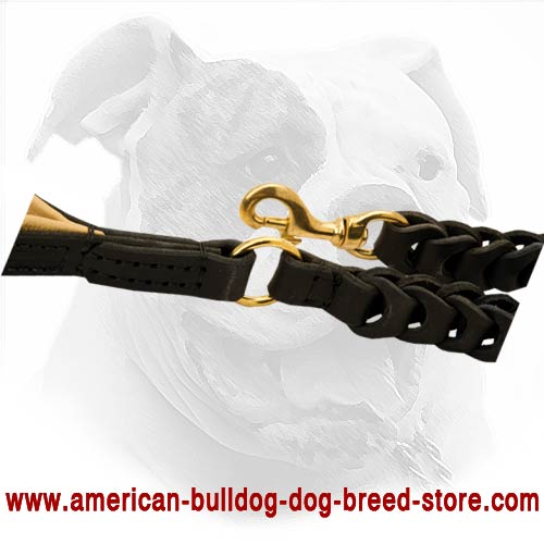 Secure snap hook for reliable use of American Bulldog leash