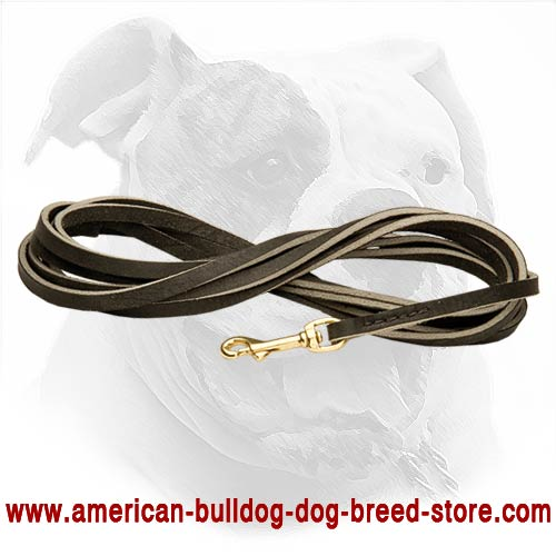 Best leash for training your Bulldog in hard working conditions