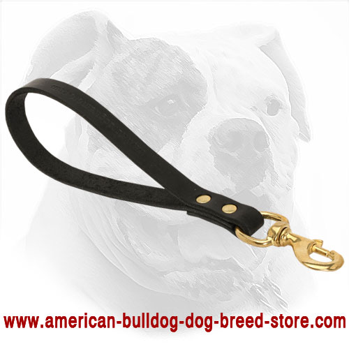 Leather American Bulldog Leash