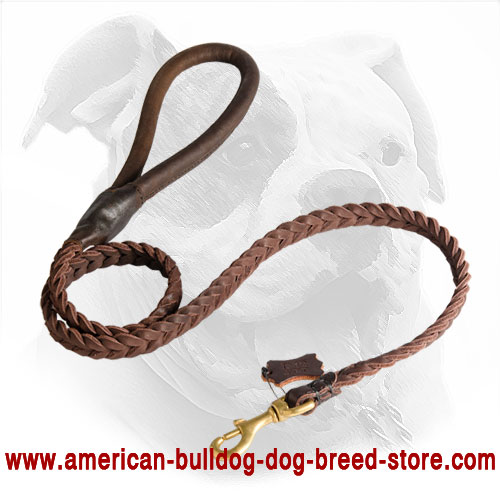 Decorated Leather American Bulldog Leash