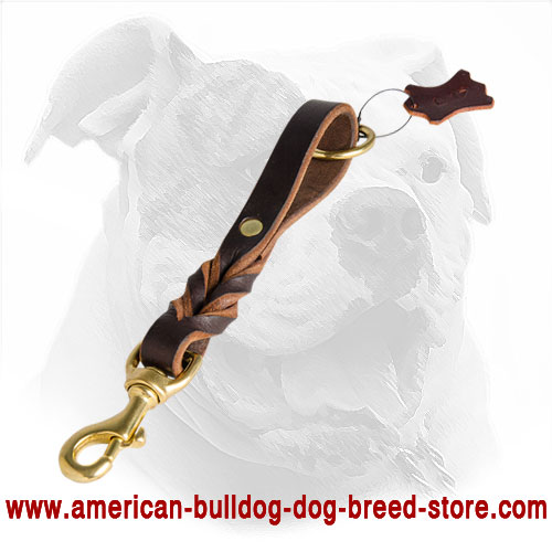 Decorated Short Leather American Bulldog Leash