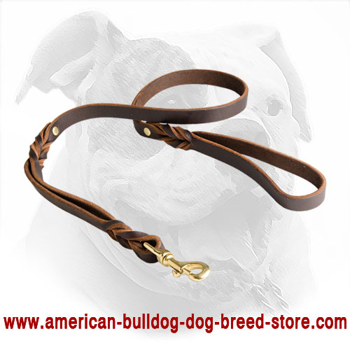 Decorated Leather American Bulldog Lead