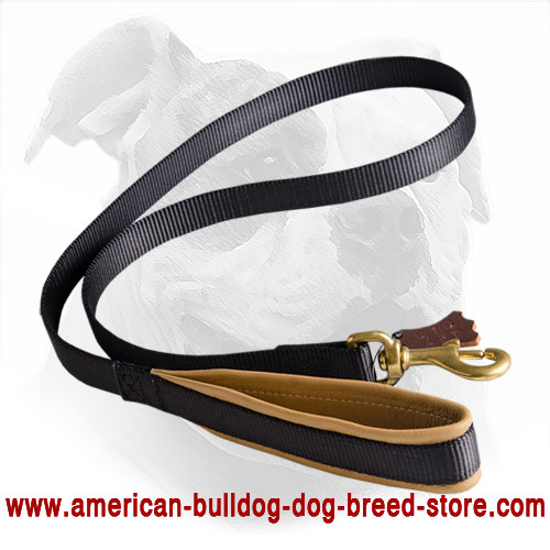 Padded Nylon American Bulldog Leash