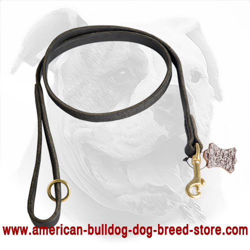 Leather American Bulldog Leash with Strong Hardware