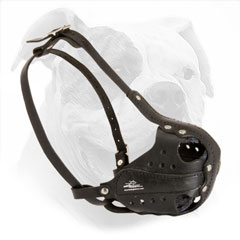 American Bulldog Muzzle for Attack Training