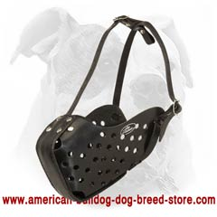 Good muzzle for training American Bulldog