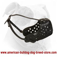 Adjust easily this muzzle on your Bulldog