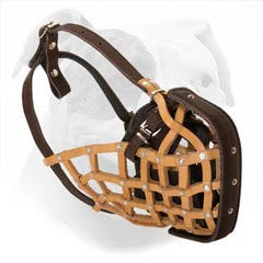 Easy to fit leather basket muzzle or American Bulldog