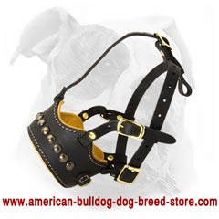 Free breathing and panting Bulldog muzzle