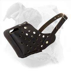 best leather muzzle
