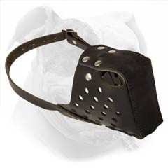 High quality leather attack training muzzle