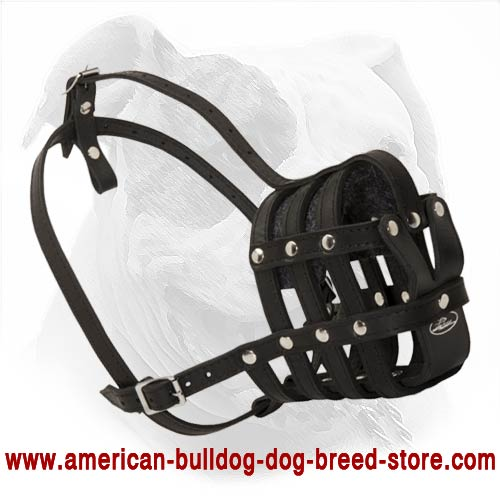 Fabulous Leather Cage Muzzle For Comfy Walking Of Your
