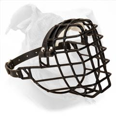 Wire cage dog muzzle for American Bulldog