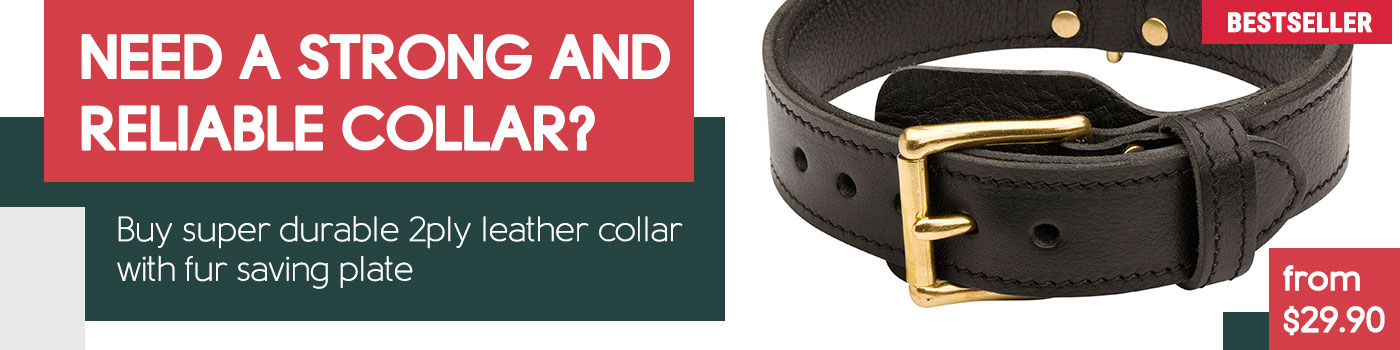 2 Ply Leather Collar for Agitation