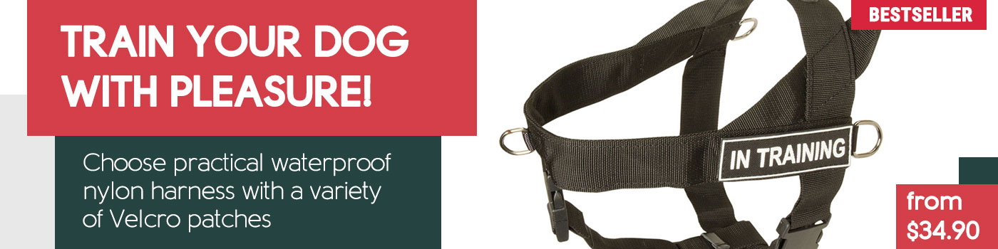 American Bulldog Nylon Harness for Pulling, Tracking, Jogging and Every Day Walks